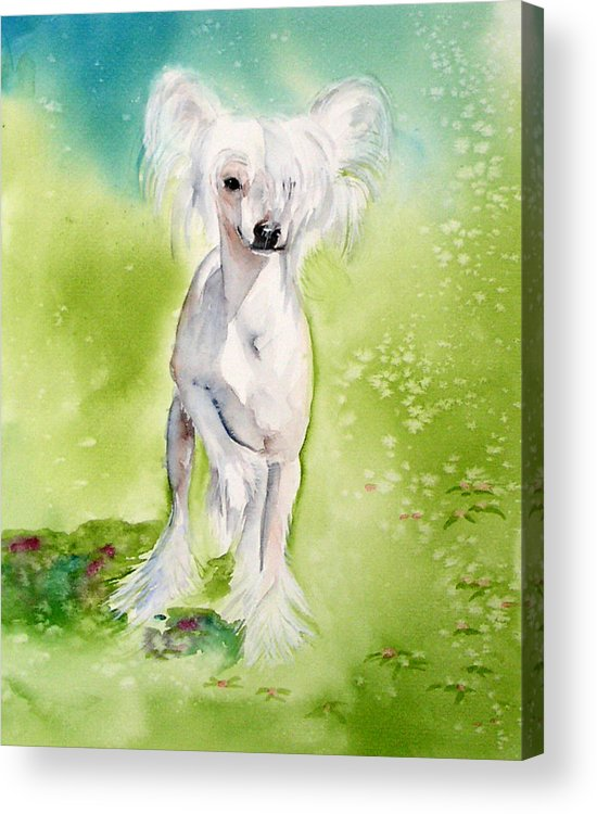 Canine Acrylic Print featuring the painting Flower by Gina Hall