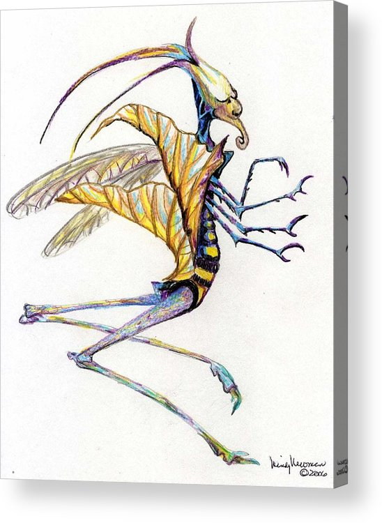Insect Acrylic Print featuring the drawing Leaf Hopper by Mindy Newman