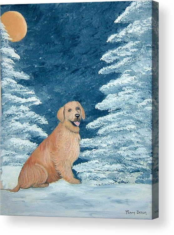 Golden Retriever Acrylic Print featuring the painting Midnight Snow by Tammy Brown