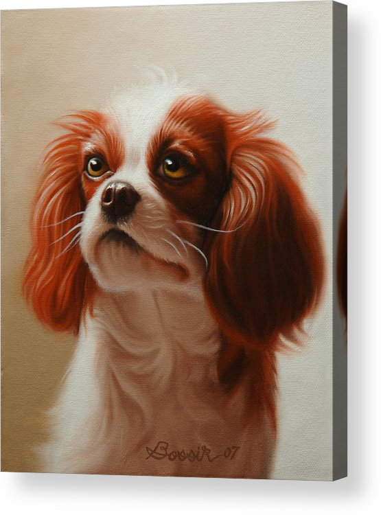 Cavalier King Charles Acrylic Print featuring the painting Pet Portrait Of A Cavalier King Charles Spaniel by Eric Bossik