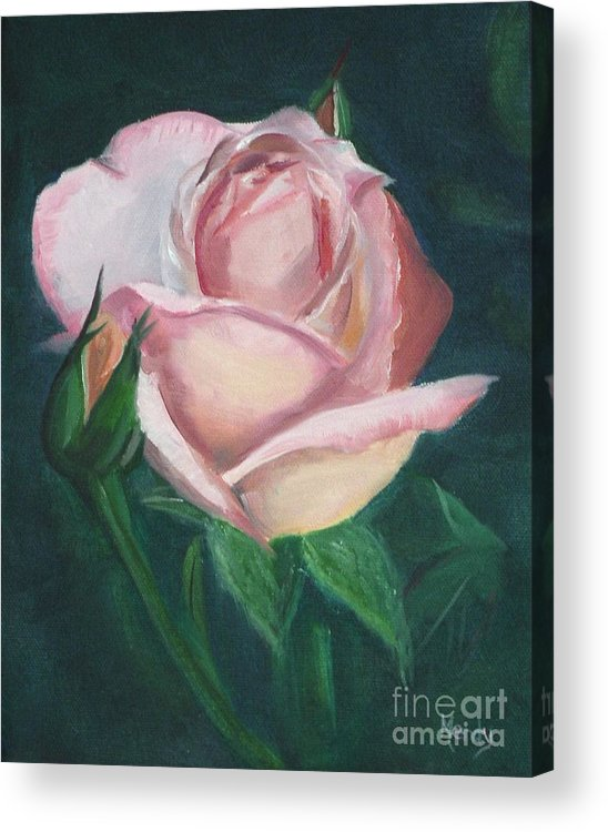 Rose Acrylic Print featuring the painting Pink Rose by Mendy Pedersen