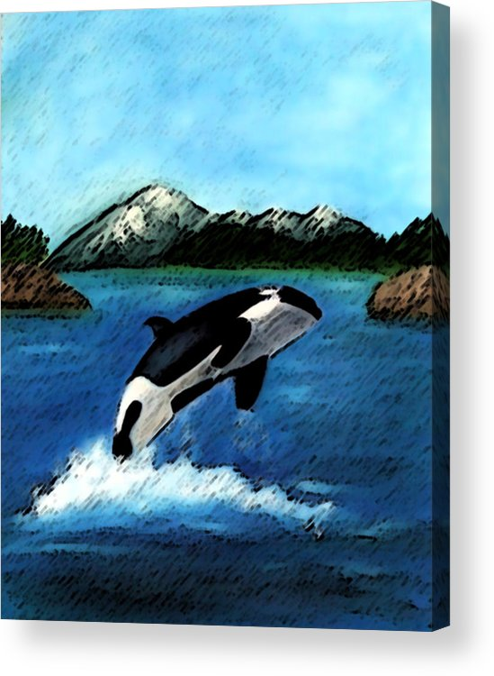 Orca Acrylic Print featuring the digital art Playful Orca by Mary Gaines