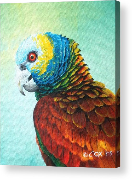 Chris Cox Acrylic Print featuring the painting St. Vincent Parrot by Christopher Cox