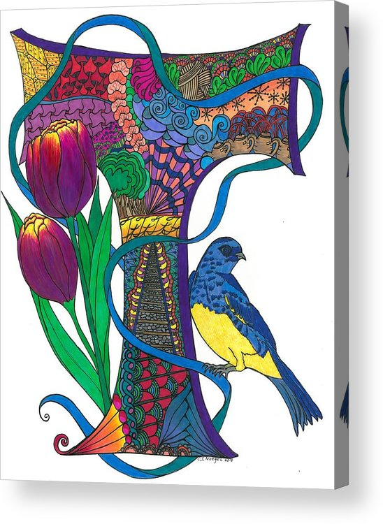 Zen Acrylic Print featuring the drawing Tittlelating T by Jeanine Noegel