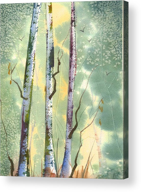 Birch Acrylic Print featuring the painting White Birch by Ruth Bevan