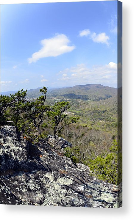 Nature Acrylic Print featuring the photograph On The Edge by Susan Leggett