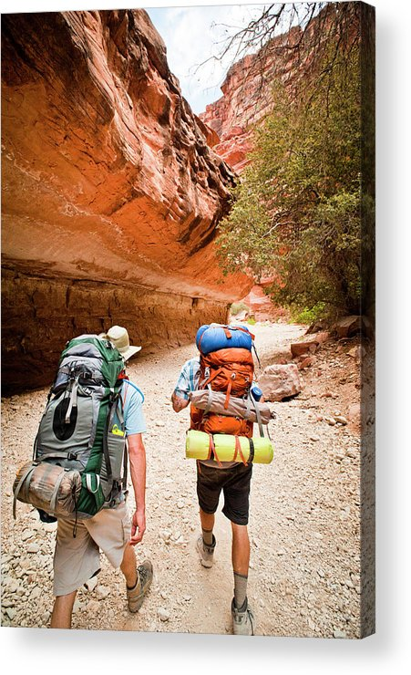 Caucasian Ethnicity Acrylic Print featuring the photograph Two Friends Hiking Through The Grand by Rob Hammer
