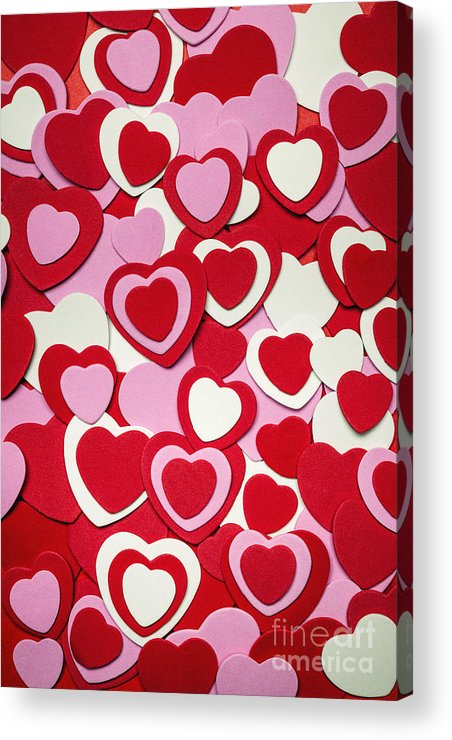 Hearts Acrylic Print featuring the photograph Valentines Day Hearts by Elena Elisseeva