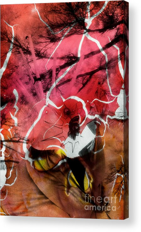 Patrickwey Acrylic Print featuring the photograph Film Creations-native by Patrick Wey