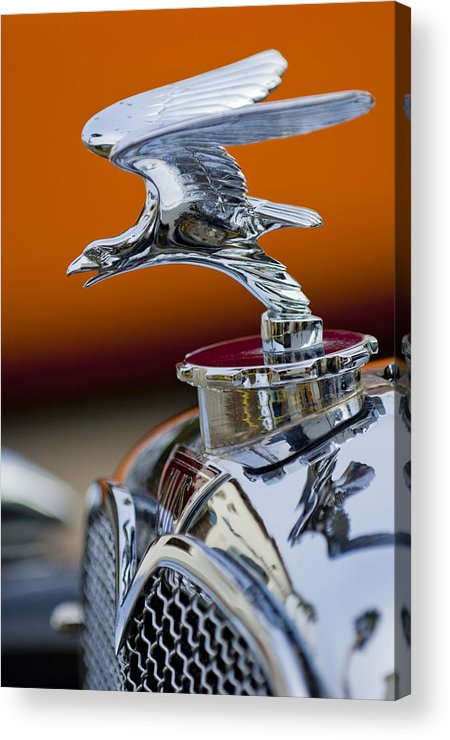 1932 Alvis Speed 20 Acrylic Print featuring the photograph 1932 Alvis Hood Ornament 2 by Jill Reger