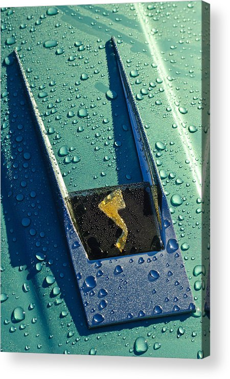 1963 Studebaker Avanti Acrylic Print featuring the photograph 1963 Studebaker Avanti Hood Ornament by Jill Reger