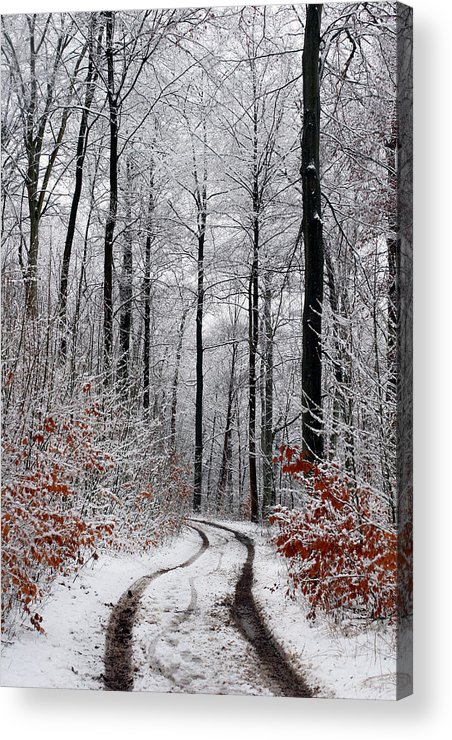 Denmark Acrylic Print featuring the photograph Danish Winter by Jean Schweitzer