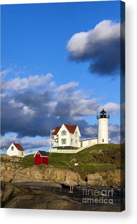 Cape Neddick Acrylic Print featuring the photograph Nubble Lighthouse by John Greim