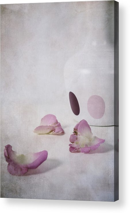 Detail Acrylic Print featuring the photograph Petals by Joana Kruse