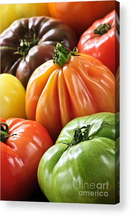 Heirloom Acrylic Print featuring the photograph Heirloom Tomatoes by Elena Elisseeva