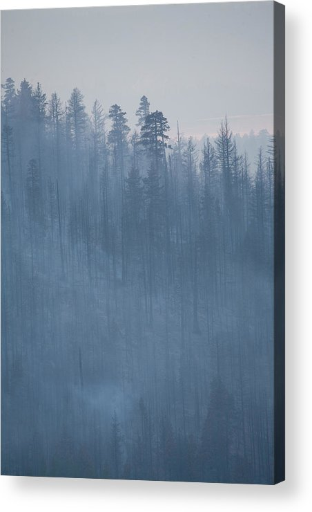 Angora Acrylic Print featuring the photograph Angora Fire In South Lake Tahoe, Ca by Justin Bailie