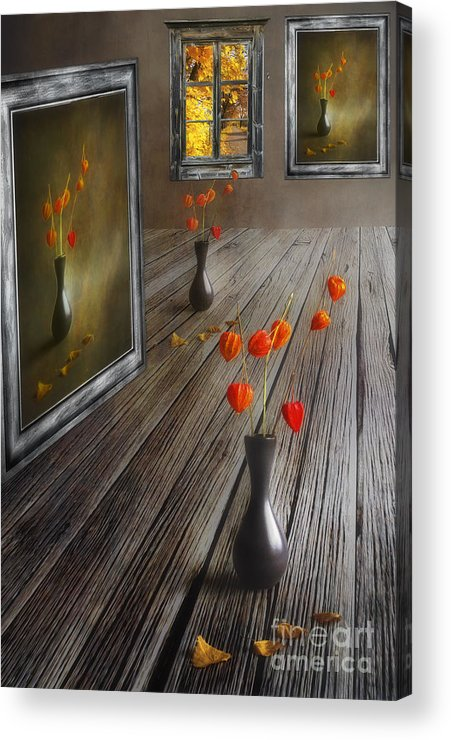 Art Acrylic Print featuring the photograph Autumn Colours by Veikko Suikkanen