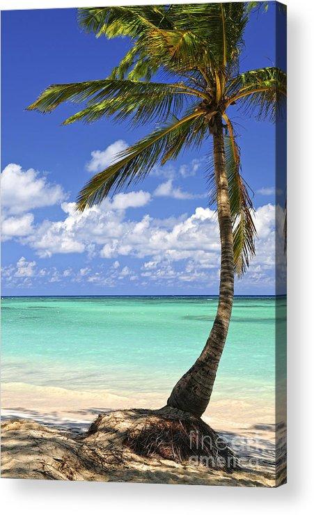 Beach Acrylic Print featuring the photograph Beach Of A Tropical Island by Elena Elisseeva