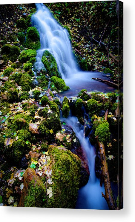 Landscape Acrylic Print featuring the photograph Cascade Creek by Chad Dutson
