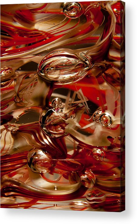 Glass Acrylic Print featuring the photograph Crimson And Gray Glass Macro Ws2 by David Patterson