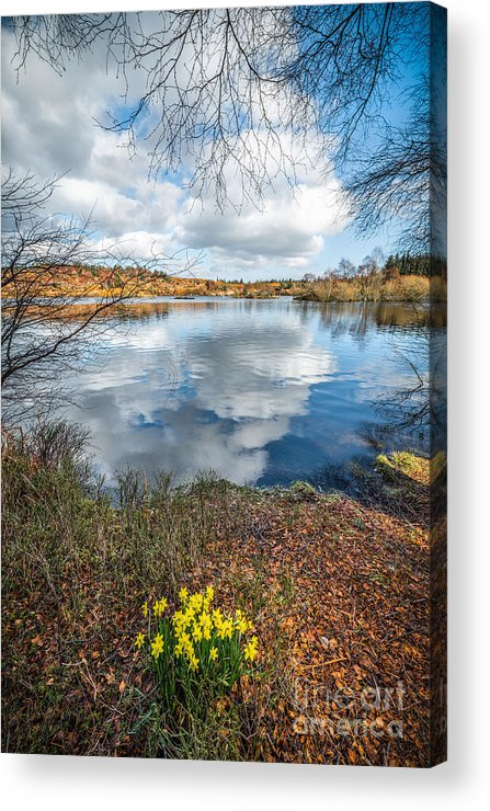 Betws Y Coed Acrylic Print featuring the photograph Daffodil Lake by Adrian Evans