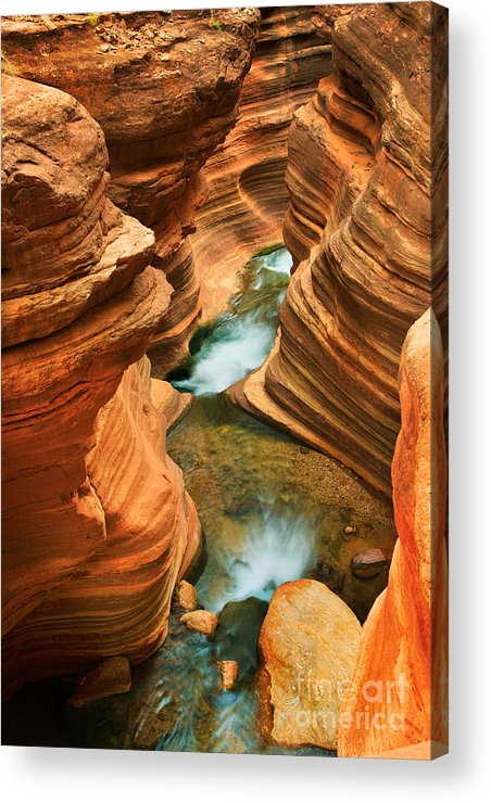 America Acrylic Print featuring the photograph Deer Creek Slot by Inge Johnsson