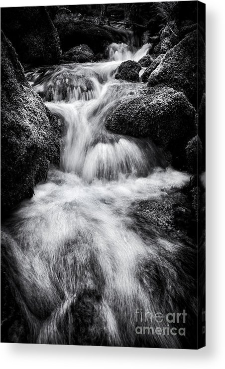 Devon Acrylic Print featuring the photograph Devon River Monochrome by Tim Gainey