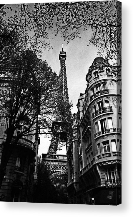 Paris Acrylic Print featuring the photograph Eiffel Tower Black And White by Andrew Fare