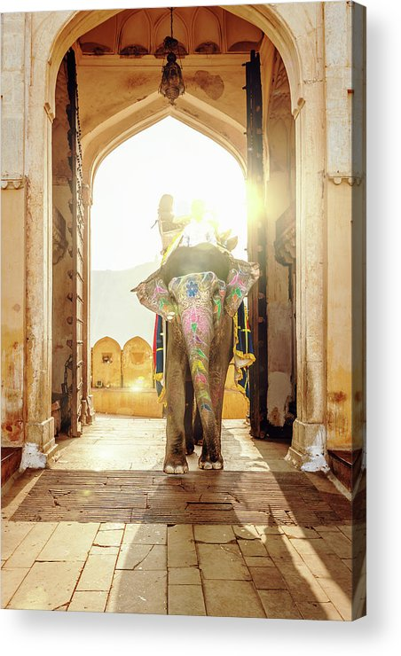 Working Animal Acrylic Print featuring the photograph Elephant At Amber Palace Jaipur,india by Mlenny