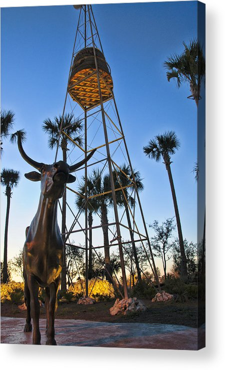 Statues Acrylic Print featuring the photograph Florida Longhorns by Betty Eich