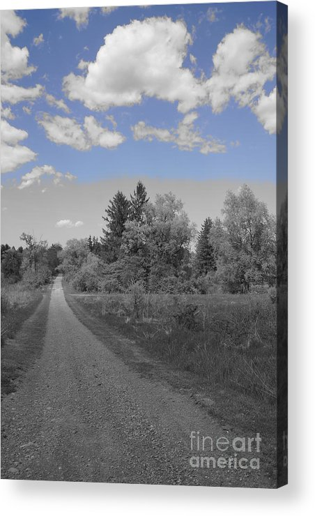 Black And White Acrylic Print featuring the photograph Follow The Road by Jeffery L Bowers