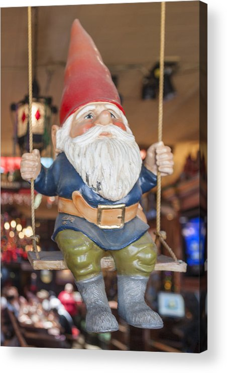 Garden Gnome Acrylic Print featuring the photograph Gnome On A Swing 2 by Scott Campbell