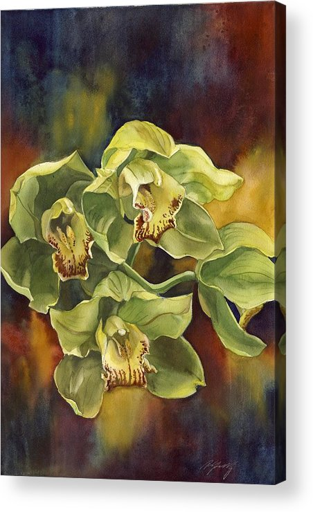 Orchid Acrylic Print featuring the painting Green Cymbidium Orchids by Alfred Ng