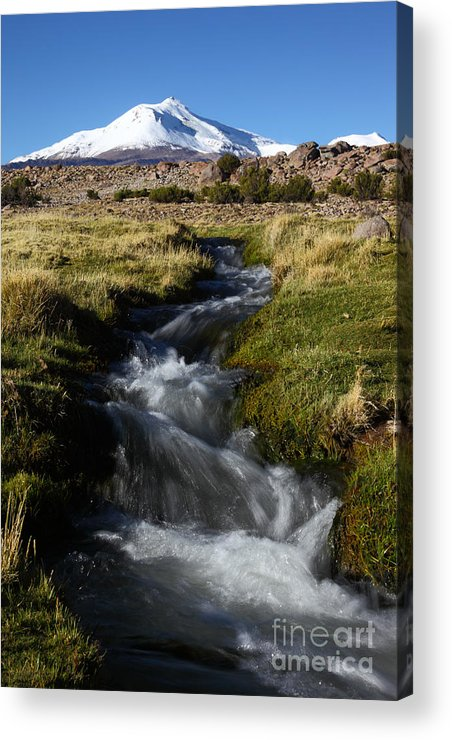 Chile Acrylic Print featuring the photograph Guallatiri Volcano And Mountain Stream by James Brunker