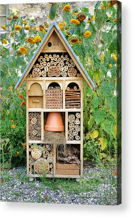 Craftsman Acrylic Print featuring the photograph Insect Hotel by Olivier Le Queinec