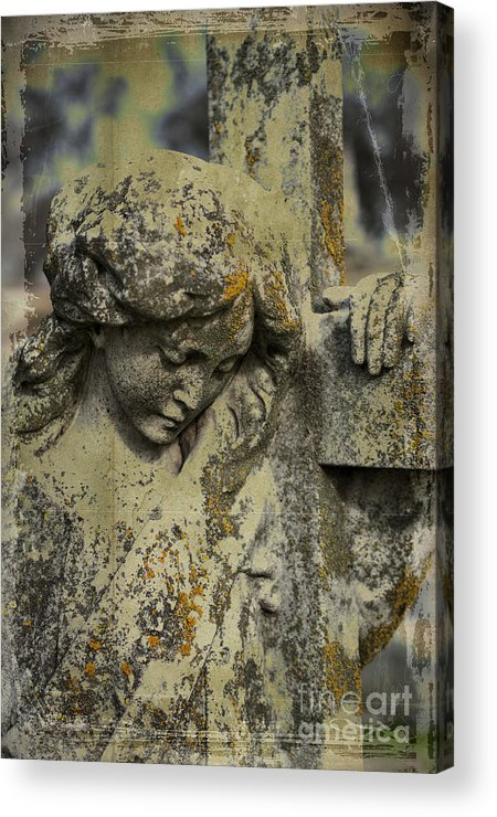 Lean On Me Acrylic Print featuring the photograph Lean On Me by Terry Rowe
