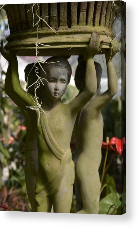Garden Acrylic Print featuring the photograph Lifting Up by William Hallett