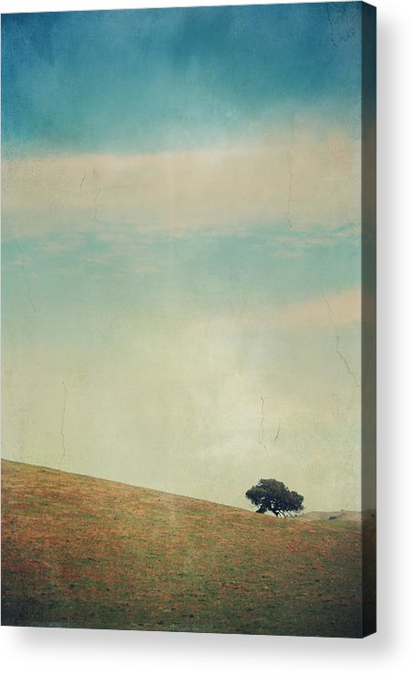 Landscapes Acrylic Print featuring the photograph Love Your Own Company by Laurie Search