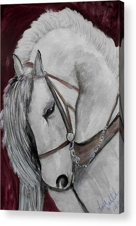 Horse Acrylic Print featuring the painting Majestc by Linda Waidelich