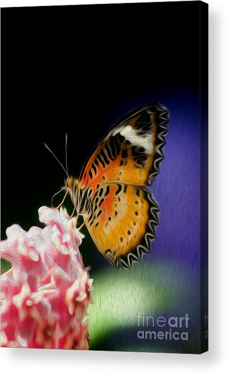 Butterfly Acrylic Print featuring the digital art Malay Lacewing Butterfly I by Kenneth Montgomery
