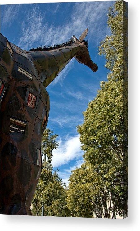 France Acrylic Print featuring the photograph Marseilles Giraffe by Oleg Koryagin