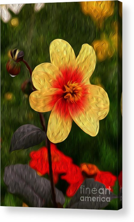 Vibrant Acrylic Print featuring the digital art Morning Dew II by Kenneth Montgomery