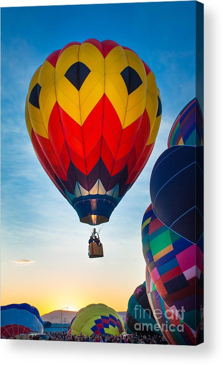 America Acrylic Print featuring the photograph Morning Flight by Inge Johnsson