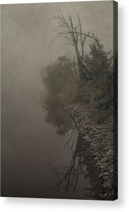 Fog Acrylic Print featuring the photograph Old Soul by Dan Sproul