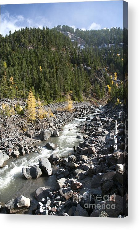Color Acrylic Print featuring the photograph Oregon Wilderness II by Peter French