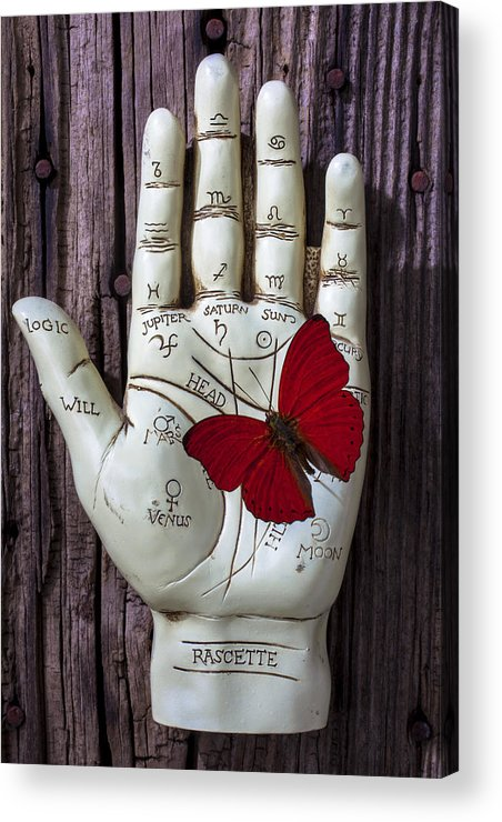Palm Reader Hand Acrylic Print featuring the photograph Palm Reading Hand And Butterfly by Garry Gay