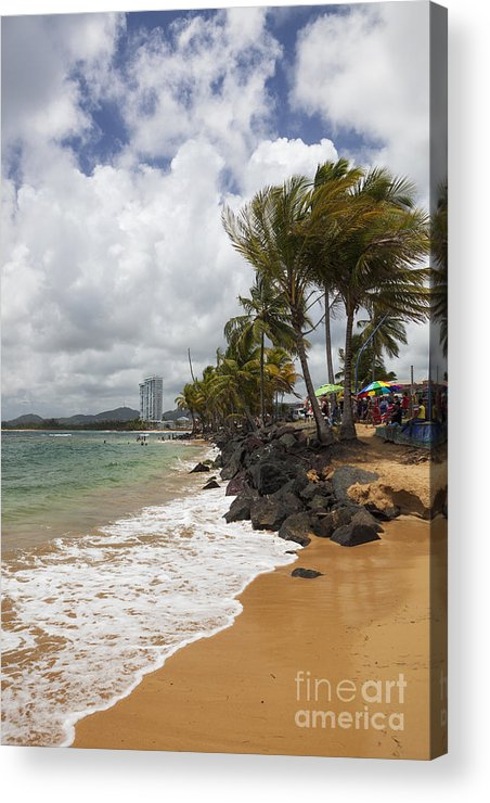 Idyllic Acrylic Print featuring the photograph Palms Trees Along Luquillo Beach by Bryan Mullennix