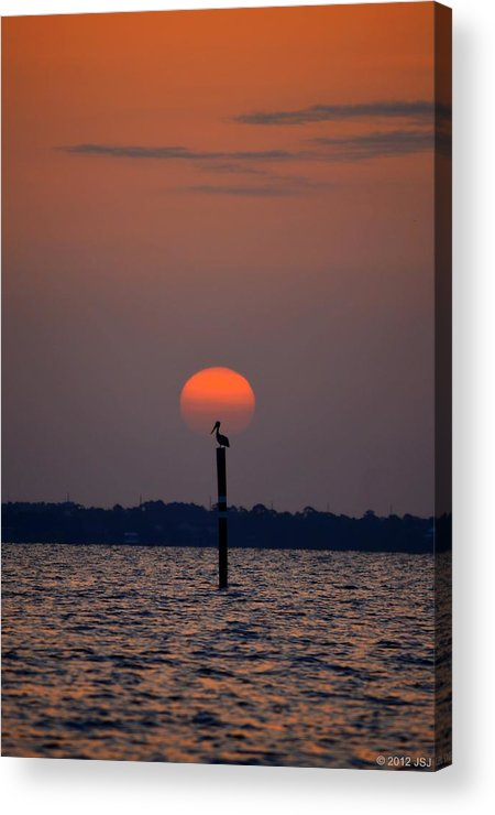 Pelican Acrylic Print featuring the photograph Pelican Sunrise Silhouette On Sound by Jeff at JSJ Photography