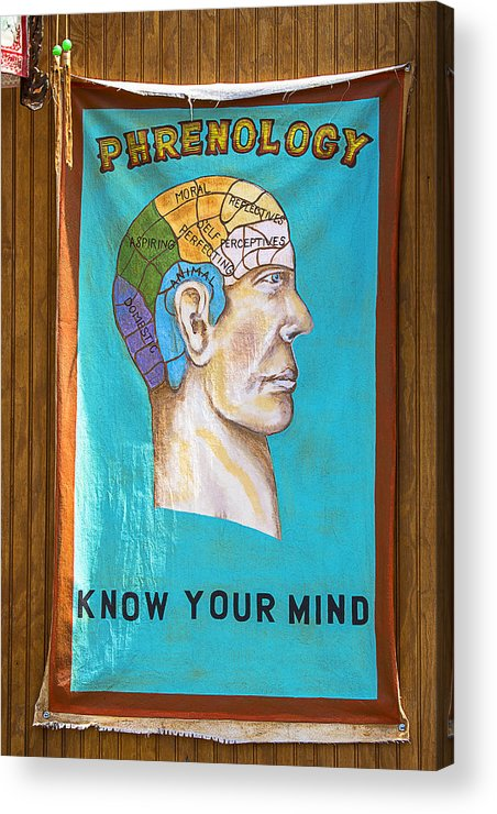 Phrenology Acrylic Print featuring the photograph Phrenology by Garry Gay