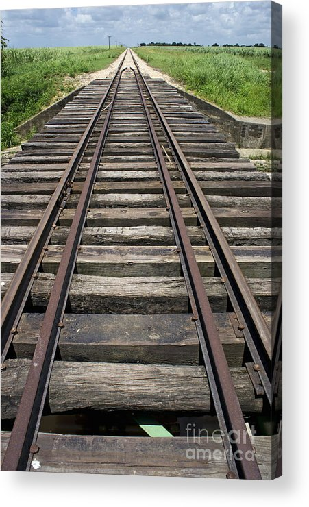 Nature Acrylic Print featuring the photograph Railroad Tracks by Sami Sarkis